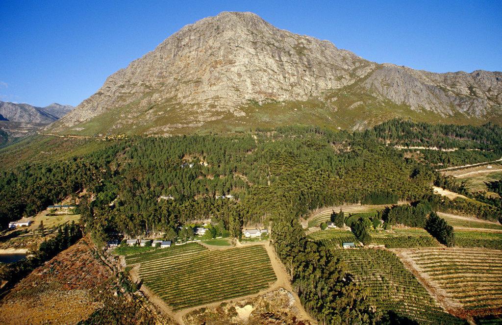 Stock Photo: 4030-3860 Cape Wine Route, Western Cape