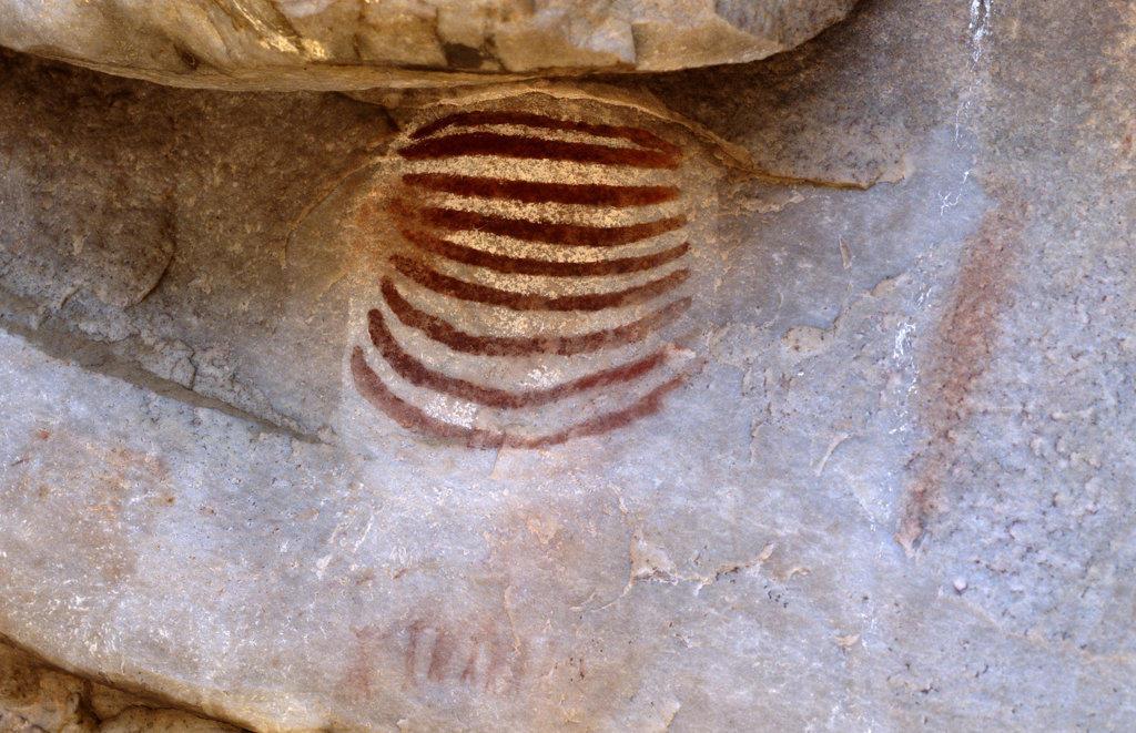 San (bushmen) rock painting, Cedarburg, Western Cape : Stock Photo
