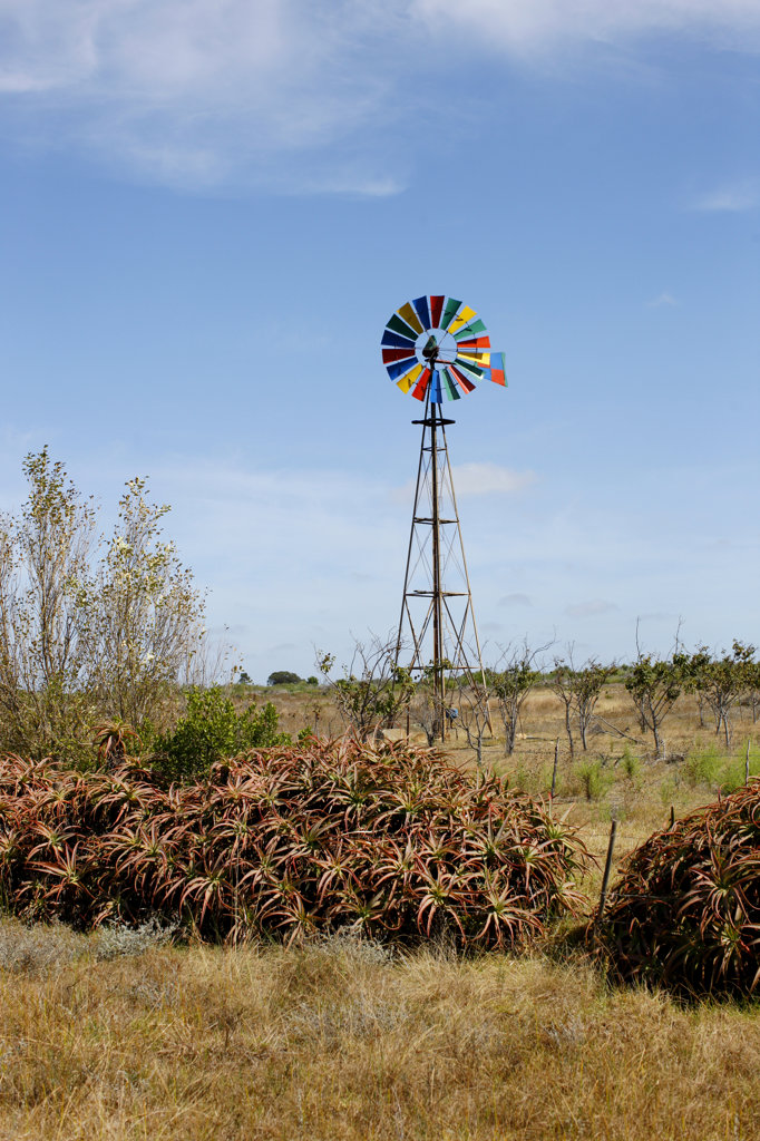 Stock Photo: 4030-5503 Colourful Windmill, Cape Infanta, South Africa