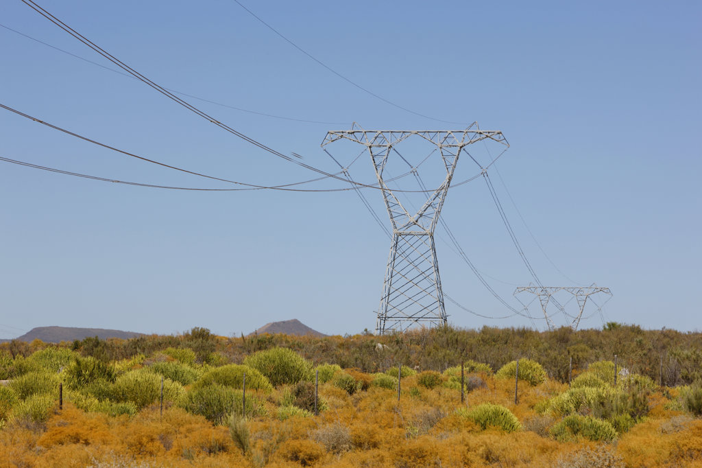 Powerlines, Karoo, South Africa : Stock Photo