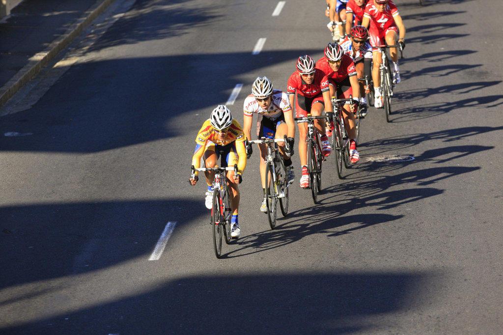 Cape Argus Cycle Tour : Stock Photo