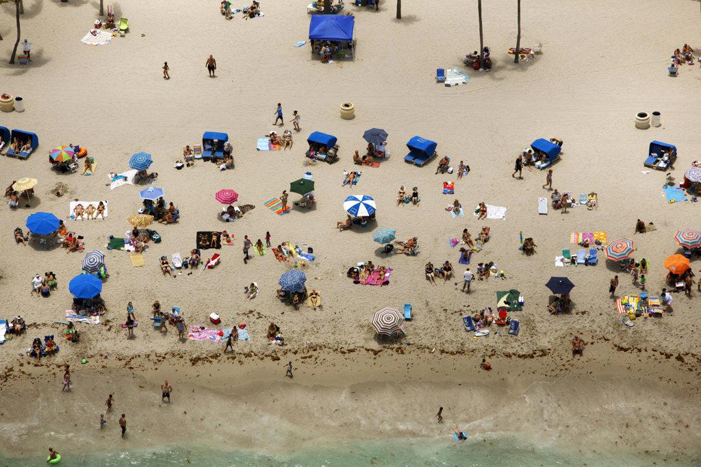 Sunbathers, Florida : Stock Photo