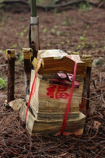 Stock Photo: 4031-450 Taiwan, Kinmen County, Ghost money on ground in woods