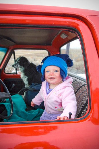 Stock Photo: 4033-145 Baby girl in a pick-up truck with a dog, Bozeman, Gallatin County, Montana, USA