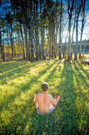 Young man practicing yoga in a field, Bozeman, Gallatin County, Montana, USA : Stock Photo
