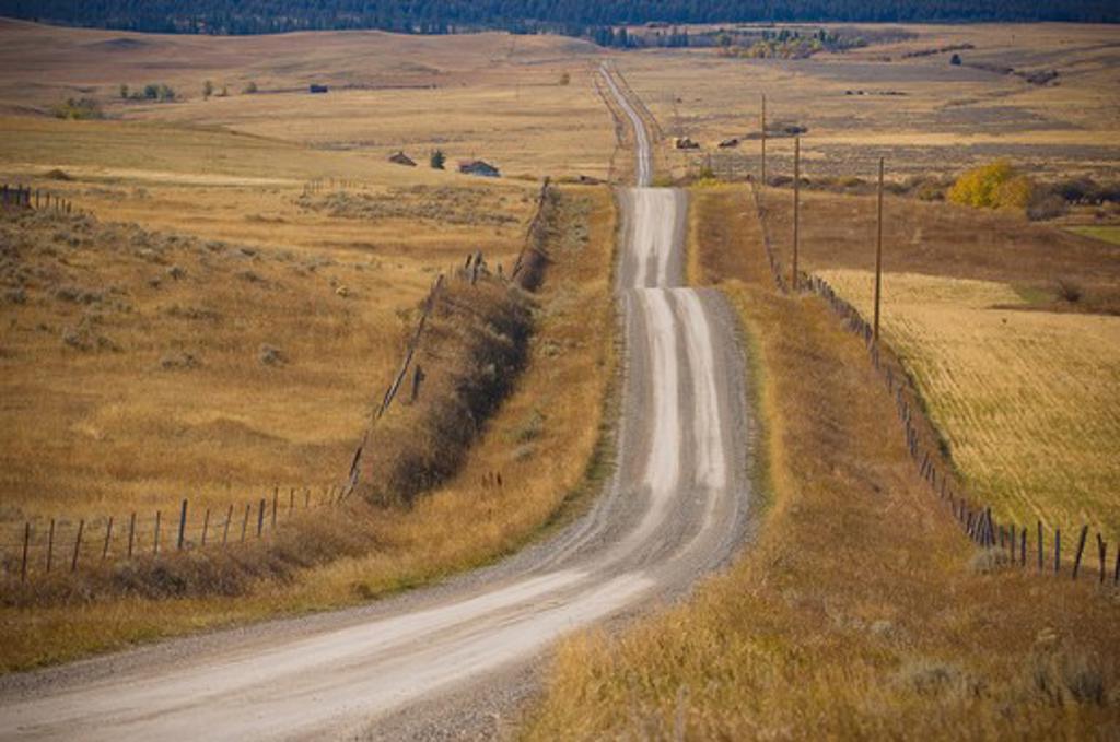 Dirt road passing through fields, Bozeman, Montana, USA : Stock Photo