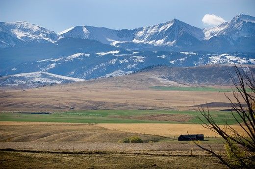 Landscape with a mountain range in the background, Tobacco Root Mountains, Bozeman, Montana, USA : Stock Photo