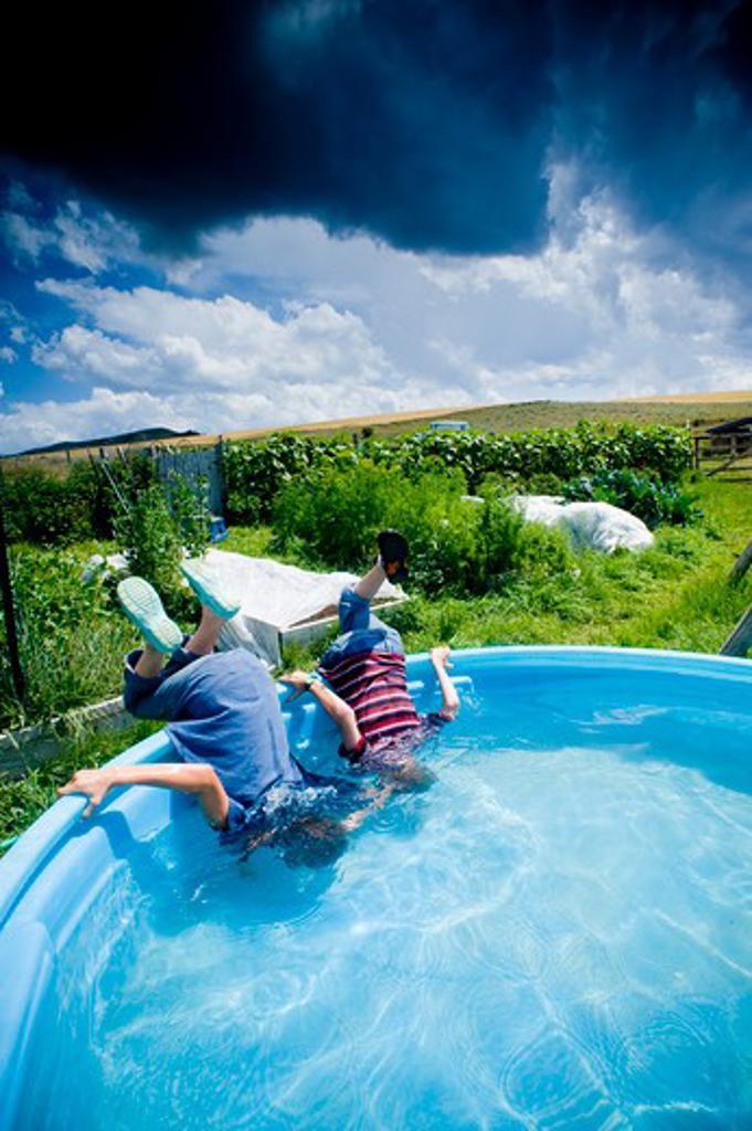 Boys sticking their heads in a backyard pool, Bozeman, Montana, USA : Stock Photo