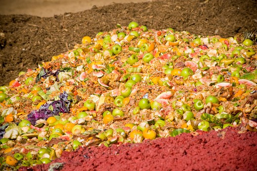 Food waste produce to be composted : Stock Photo