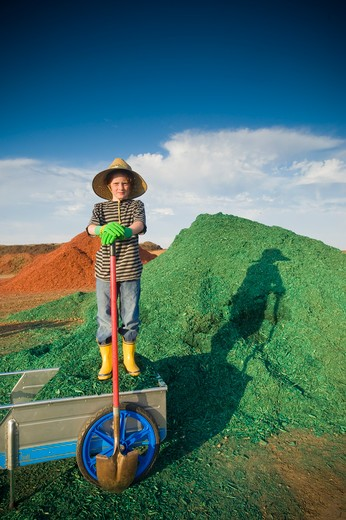 Boy with a shovel in front of a heap of dyed wood chips : Stock Photo