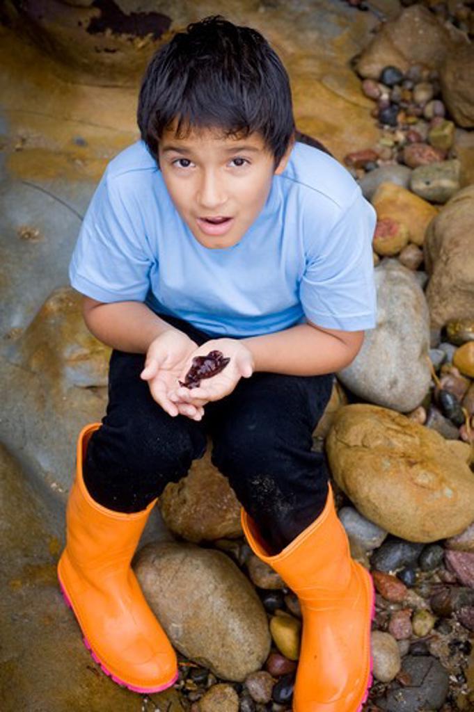 Boy with a sea slug in his hands : Stock Photo