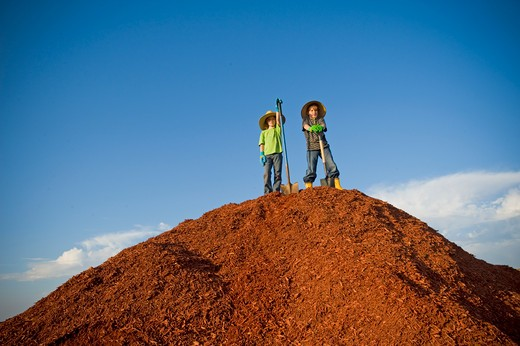 Boy and a girl standing on a heap of dyed wood chips : Stock Photo