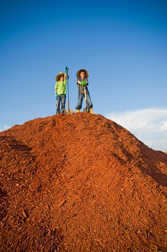 Stock Photo: 4033-433B Boy and a girl standing on a heap of dyed wood chips