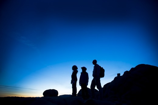 Silhouette of a man with his children, Joshua Tree National Monument, California, USA : Stock Photo