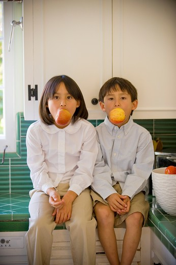 Stock Photo: 4033-503B Boy and his sister sitting on a kitchen counter and eating apples