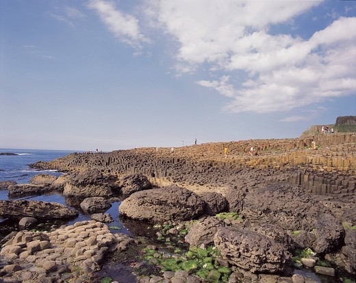 Giant´s Causeway, Caherciveen, Northern Ireland, United Kingdom : Stock Photo