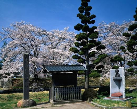 Tatsuoka castle remains, Goryokaku, Saku, Nagano, Japan : Stock Photo