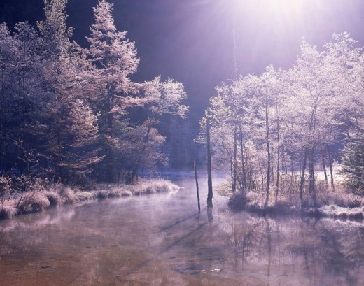 Stock Photo: 4034-19449 Tashiro pond of a fog deposit Kamikochi Azumi Nagano Japan
