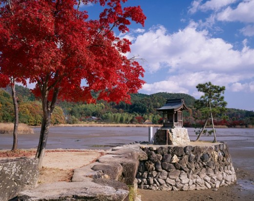 Autumn Hirosawa´s pond Kyoto Kyoto Japan Red leaves Tree Pond Blue sky Clouds : Stock Photo