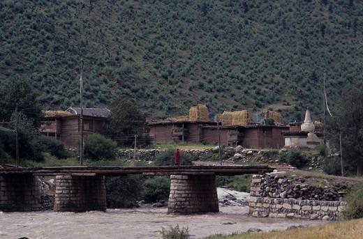Stock Photo: 4034-32431 wheat Dryness, Agriculture, Tibet Autonomous Region, China