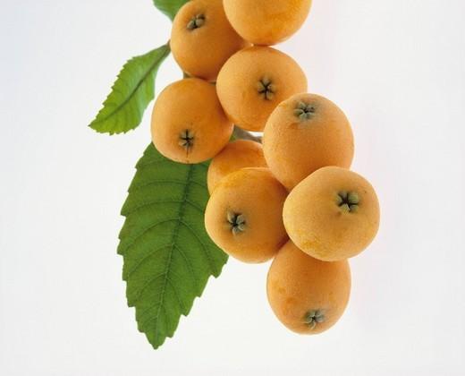 Concept fruit Japan : Stock Photo
