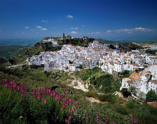 Casares, White house, Ruins of Castle, Andalucia, Spain, city view : Stock Photo