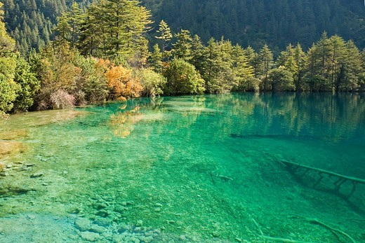 Jiuzhaigou Valley Scenic and Historical Interest Area, Sichuan Province, China, World Heritage : Stock Photo