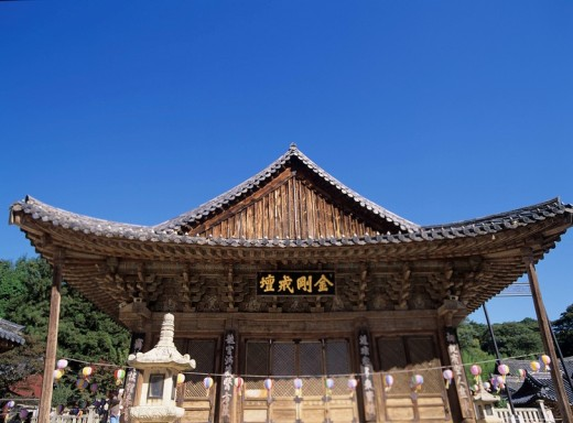 Tongdosa Temple Daeungjeon Pusan South Korea Blue sky Temple Paper lantern Tree Plant : Stock Photo