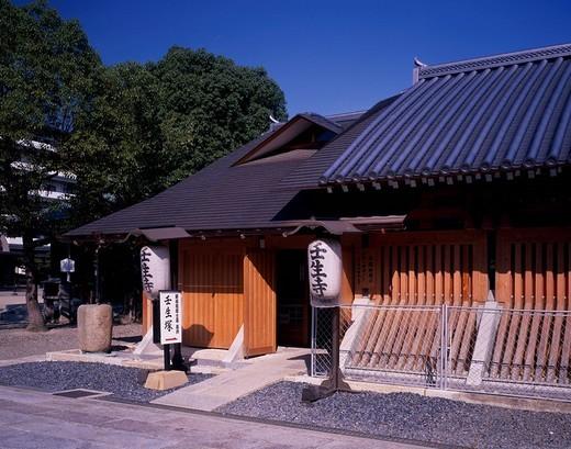 Mibu_dera Mibu mound Amitabha hall Kyoto Kyoto Japan Building Paper lantern Tree Green Blue sky : Stock Photo