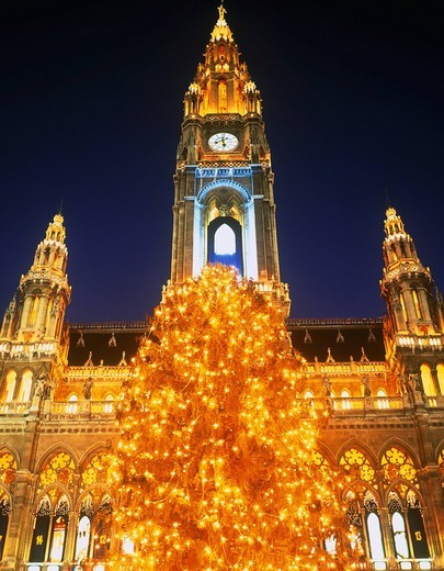 City hall, Christmas market, Christmas tree, Wien, Austria : Stock Photo