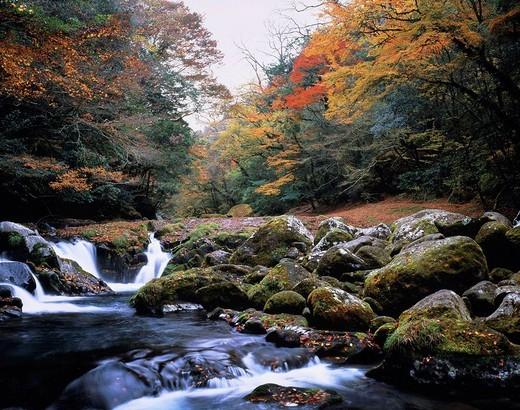 Kikuchi ravine, Kikuchi, Kumamoto, Japan : Stock Photo