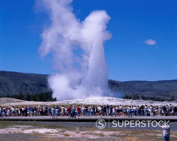 Old Faithful Geyser, Yellow stone National Park, Wyoming, United States of America : Stock Photo