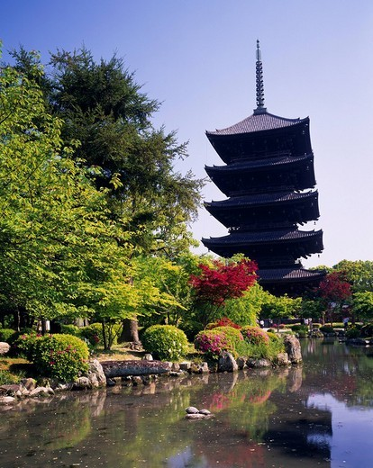 Fresh green Toji Temple Temple Temple Five_Stried_Tower Kyoto Kyoto Japan Tree Green Maple Maple Red Pond Stone : Stock Photo