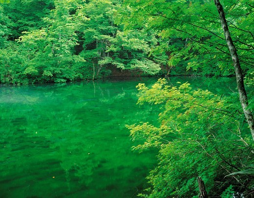 Water, person water best 100, Tsunammachi, Niigata, Japan in dragon Ke hollow : Stock Photo