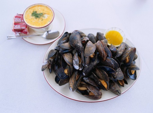 Blue mussel Canada Canadian Cuisine : Stock Photo