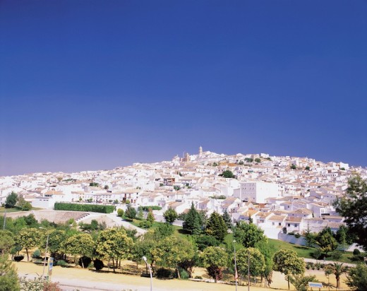 Stock Photo: 4034-52609 White row of houses, Baena, Andalucia, Spain