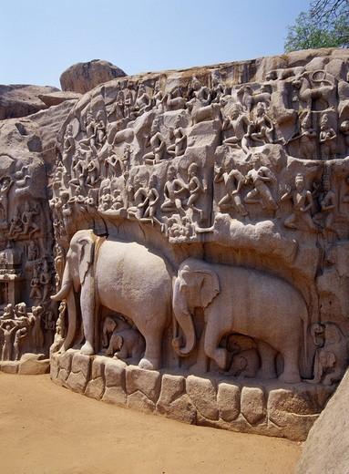 Arjuna Penance Mahabalipuram India : Stock Photo