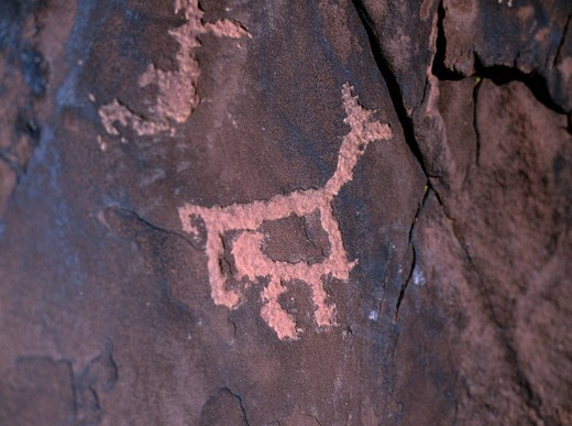 Stock Photo: 4034-55006 Petros Glyphe Jujuy state Argentina Rock Picture Animal