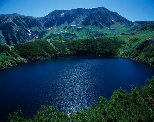 Tateyama Mikurigaike Pond High pine Tateyama Toyama Japan Mountain : Stock Photo