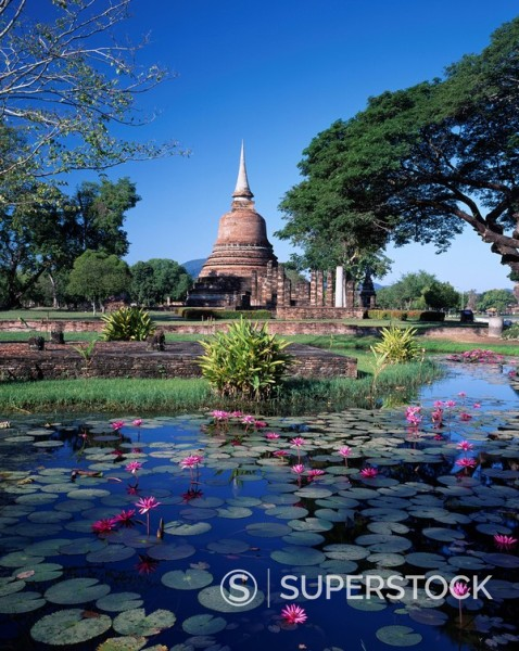 Stock Photo: 4034-64372 temple Wat Chana Songkhram Sukhothai Thailand tree Lotus flower plant December