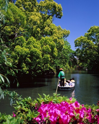 Yana river descending, Flower, Yanagawa, Fukuoka, Japan : Stock Photo