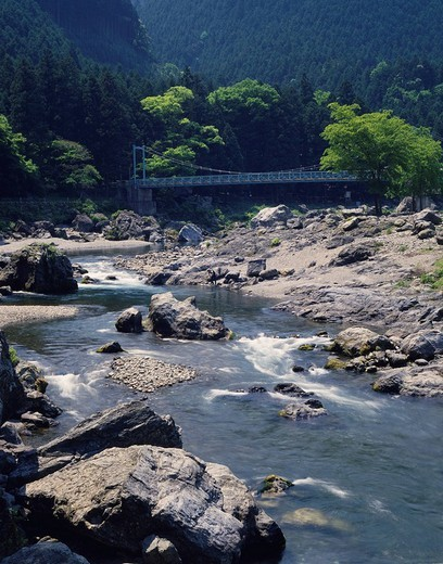 Ontake ravine Ome Tokyo Japan Mountain Mountain stream River Rock Spray Bridge Tree : Stock Photo