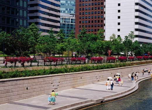 Promenade, flower, Seoul, South Korea : Stock Photo