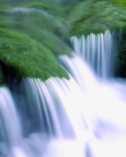Green, White, Moss, Water stream, Ryusen Cave, Japan : Stock Photo