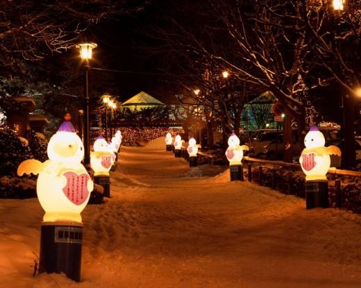 Hakodate Winter Festival Hakodate Hokkaido Japan Snow Streetlight Lighting Tree : Stock Photo