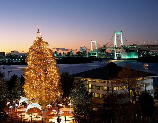 Christmas tree of Odaiba Tokyo Japan Bridge Sea Tree Neon Lighting Illuminations City View : Stock Photo