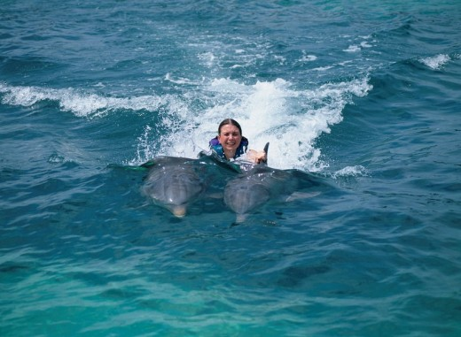 Dolphin tour Isram Hay Les Cancun Mexico Sea : Stock Photo