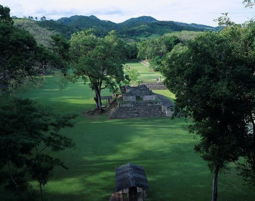 Stock Photo: 4034-96892 Copan Great Plaza World Heritage Honduras Mountain Tree Stairs Lawn