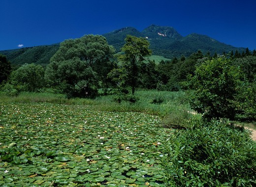 Stock Photo: 4034-97448 Imori Pond Mt. Myoko MyokoKogen Niigata Japan