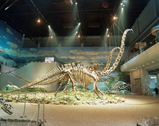 In a dinosaur museum, Zigong, Sichuan, China : Stock Photo